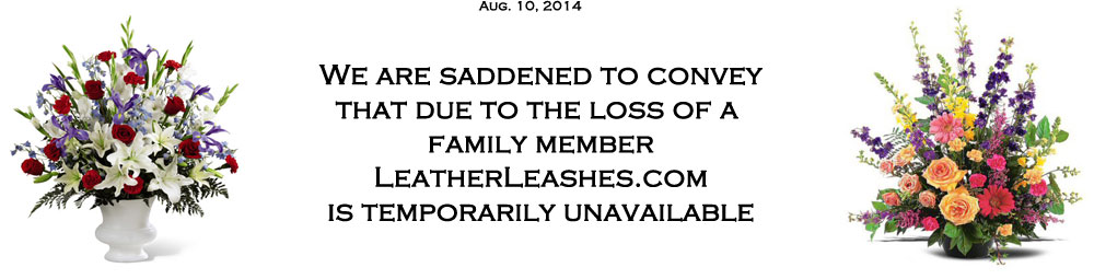 We are saddened to convey that due to the loss of a family member LeatherLeashes.com is temporarily unavailable.
